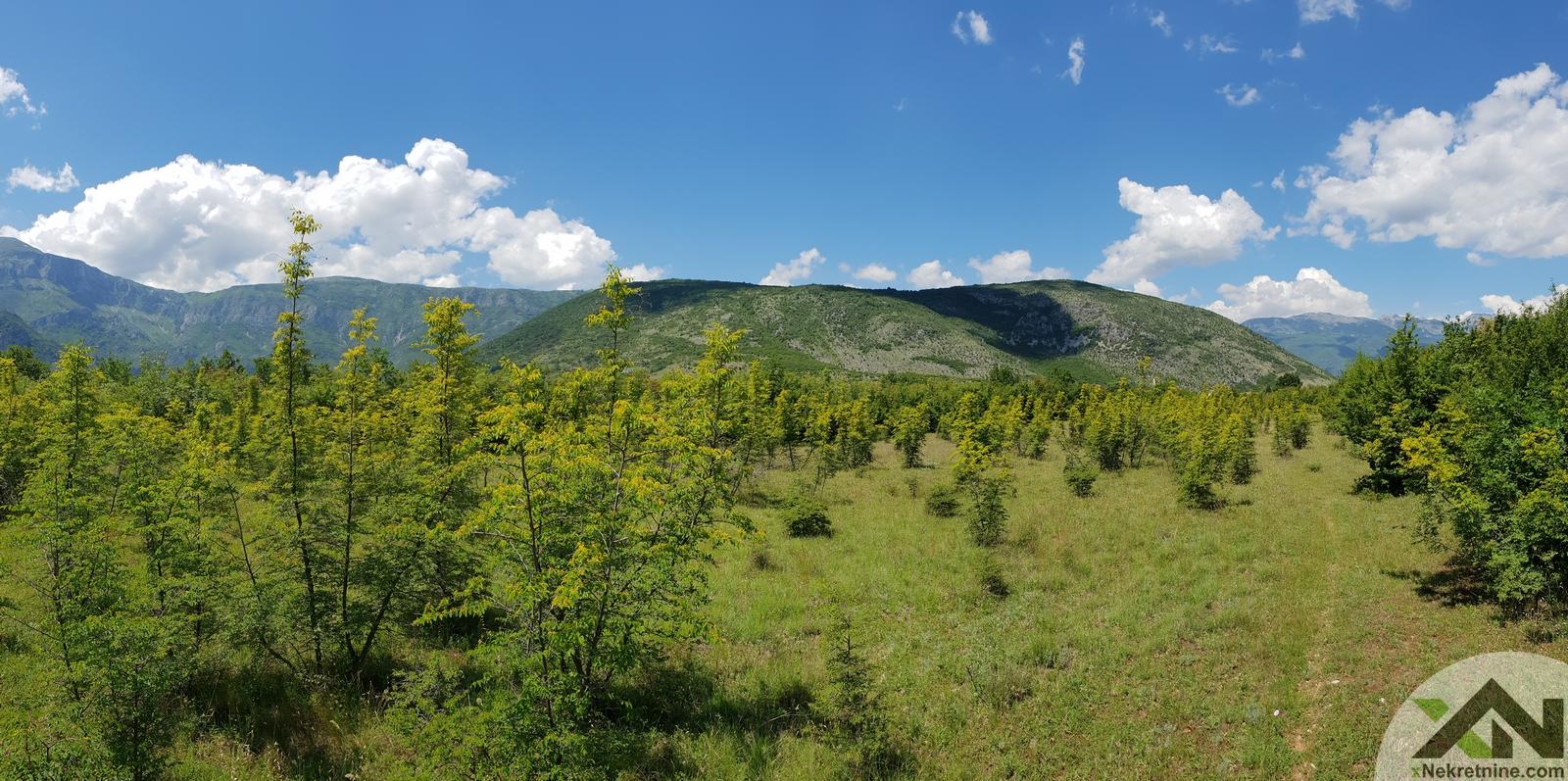 Zemljište Mostar-Livač – 21000m2