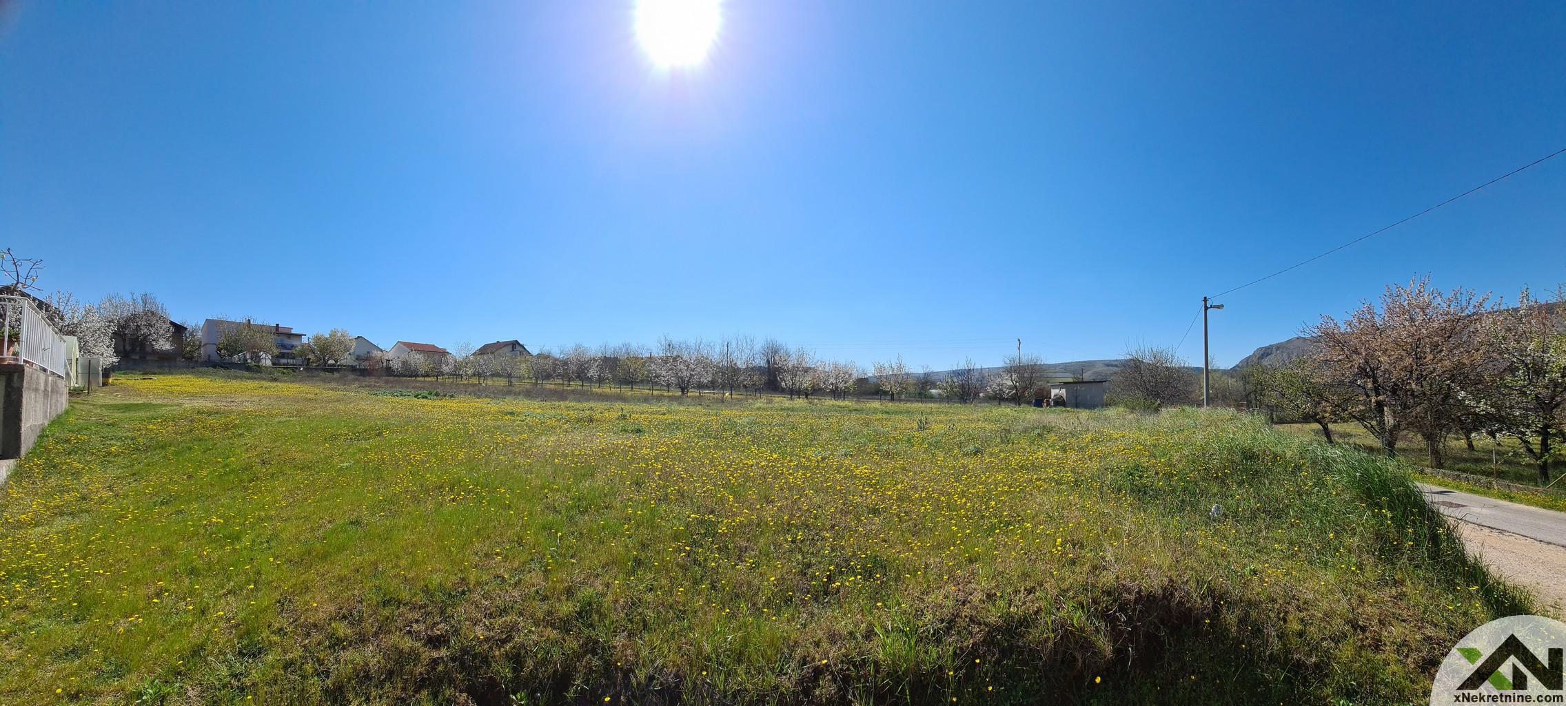 Prekrasno zemljište - Buna